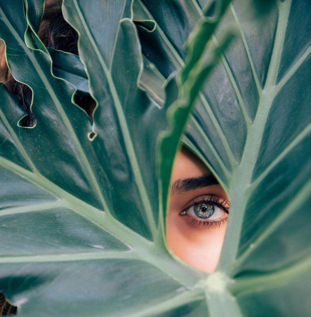 occhio verde di donna su sfondo di foglie verdi di banano